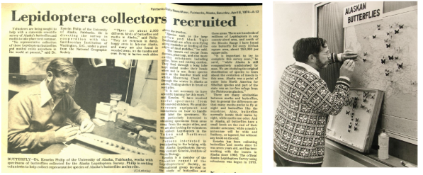 Figure 5: An excerpt of a 1974 Fairbanks Daily News Miner article (left) recruiting ALS volunteers, who ranged from children & housewives to workers constructing the Trans-Alaska Pipeline. Butterfly displays (right) were created on the University of Alaska Fairbanks campus to capture the interest of field researchers and their students, who were often willing to collect specimens during their own diverse scientific travels into the remote regions of Alaska.